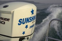 Motor, sunshine 210, Rumpf